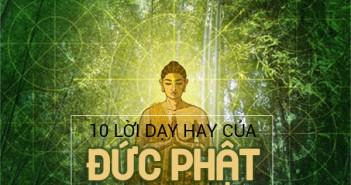 10-loi-day-cua-duc-phat-tu-bi-ve-cuoc-song-ma-ban-phai-thuoc-nam-long-1