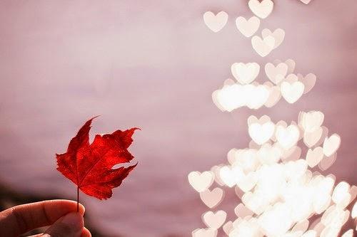 Những câu thơ hay về tình yêu đẹp và cuộc sống ngọt ngào lãng mạn nhất 5