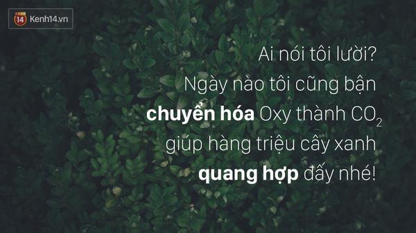 tuyen-tap-nhung-cau-noi-hay-thu-vi-nhat-ve-nhung-ke-luoi-bieng-bang-hinh-anh-6